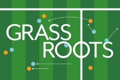 Grassroots: a guide to grasses and the pitches they make