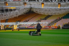 Pitches of the future: Norwich City FC and St George's Park groundsmen discuss pitch technology